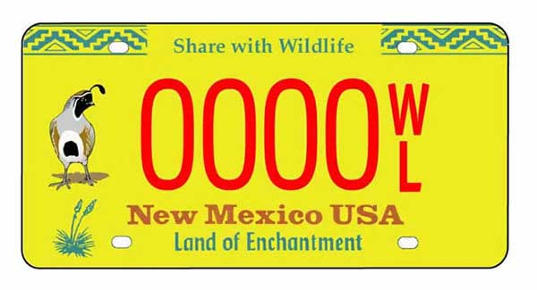 New Mexico Driving School
